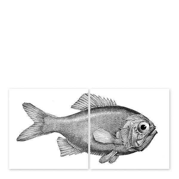 Boubouki Kakeldekor Fisk 15x15 cm 2-pack Transparent