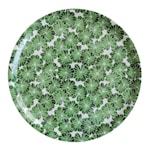 Botanica Daggkåpa Bricka 38 cm Grön